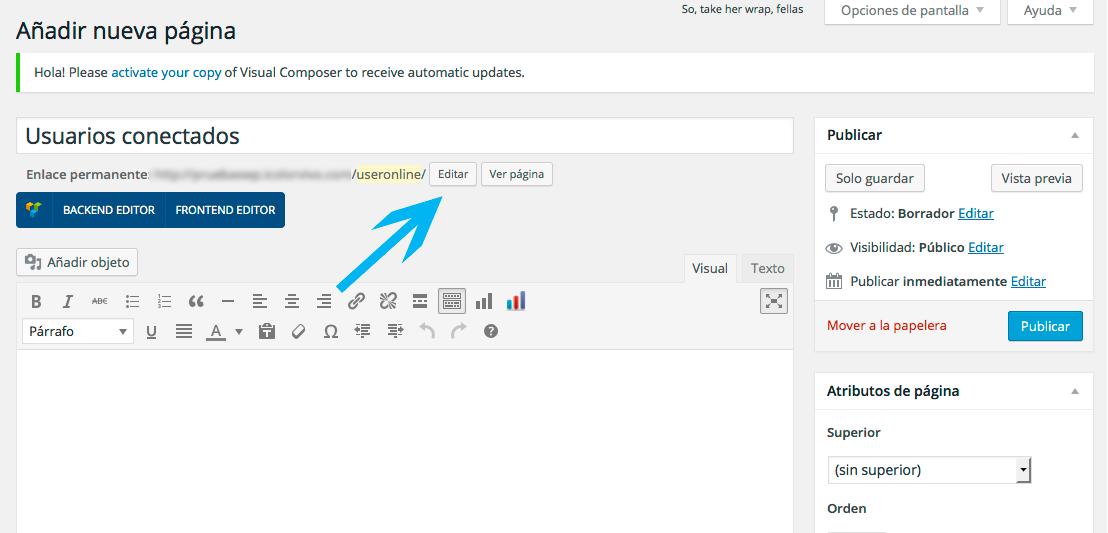 usuarios online en WordPress - Editando slug en la nueva página